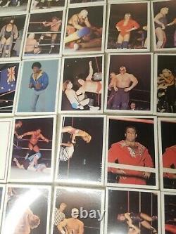Super Rare! 1988 Wonderama Nwa/wcw Wrestling Cards Wax Box 48 Packs